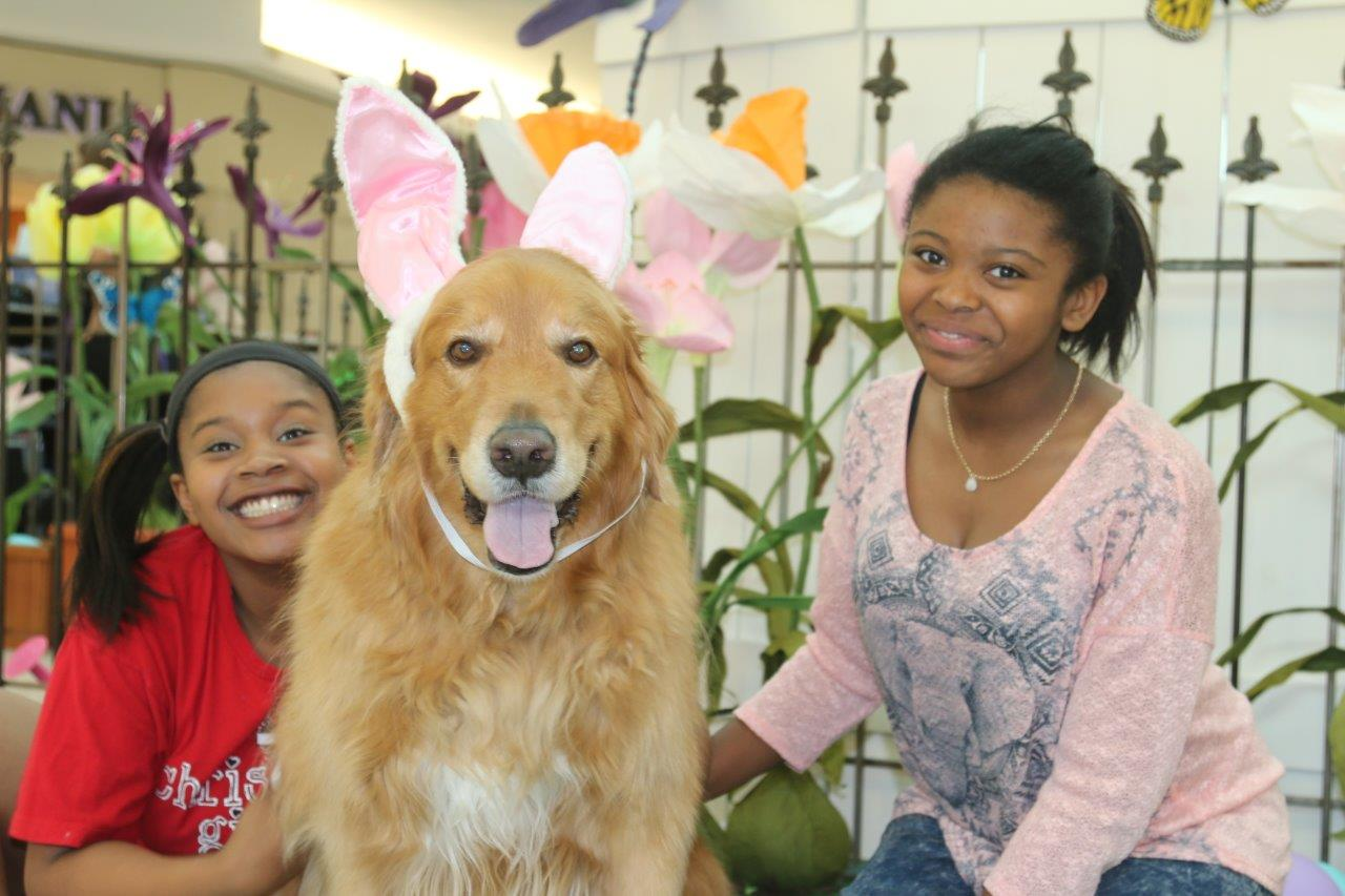 The girls have Barley ready for his close up with the Easter Bunny.